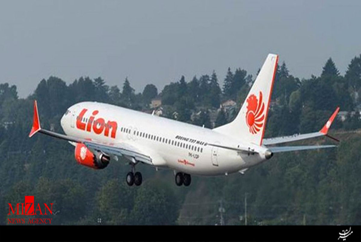 فیلم لحظه سقوط هواپیمای اندونزی از داخل هواپیما