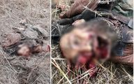 ابو یاسر العیساوی چگونه به هلاکت رسید؟+ عکس