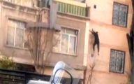 لحظه سقوط مرگبار دزد در جوادیه تهران+فیلم