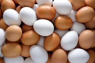 خواص شگفت انگیز تخم مرغ!